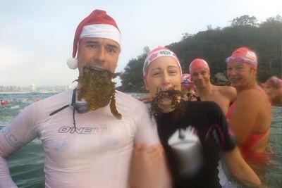 121223 Seaweed