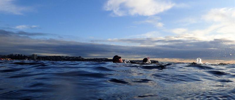 2 swimmers morning light