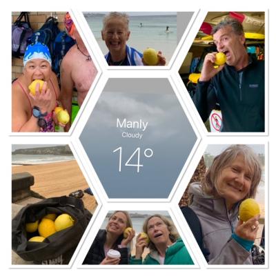 Lemons all v2