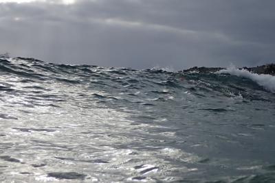 BLOG WAVE