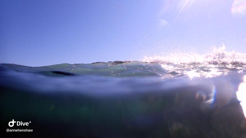 Wave1bower
